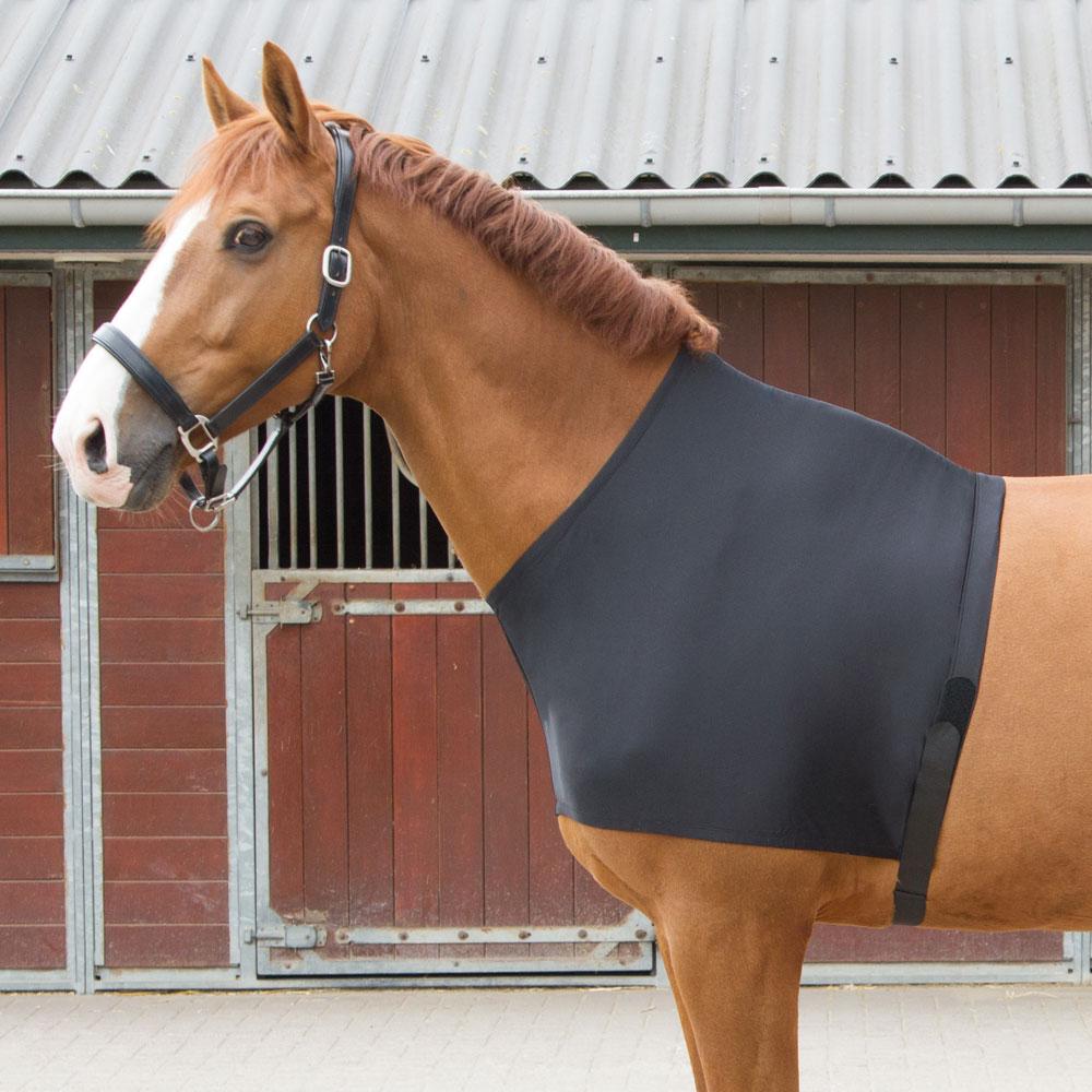 Harry's Horse Elastische Borstbeschermer