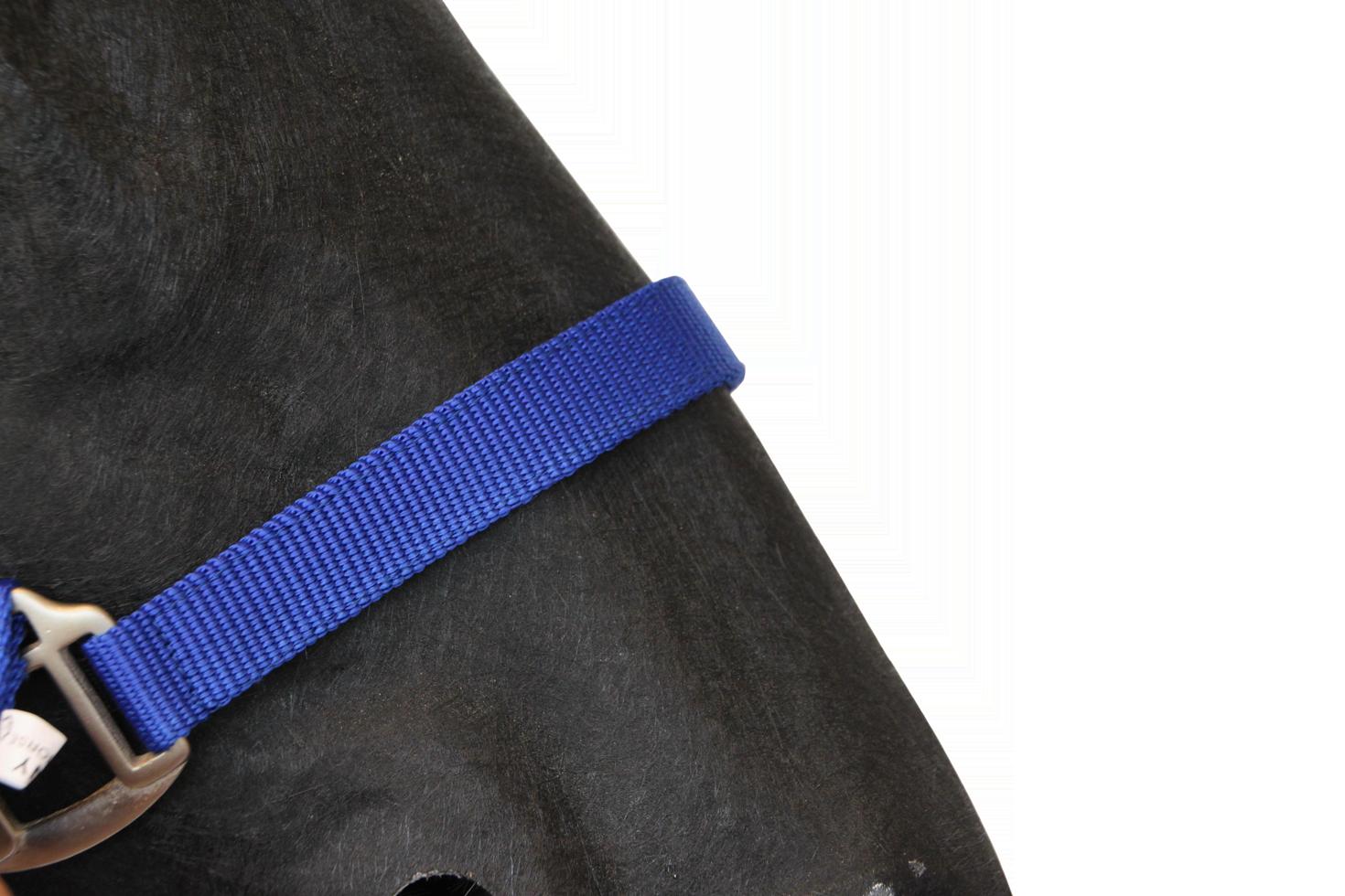 Hofman Halster Classic blauw