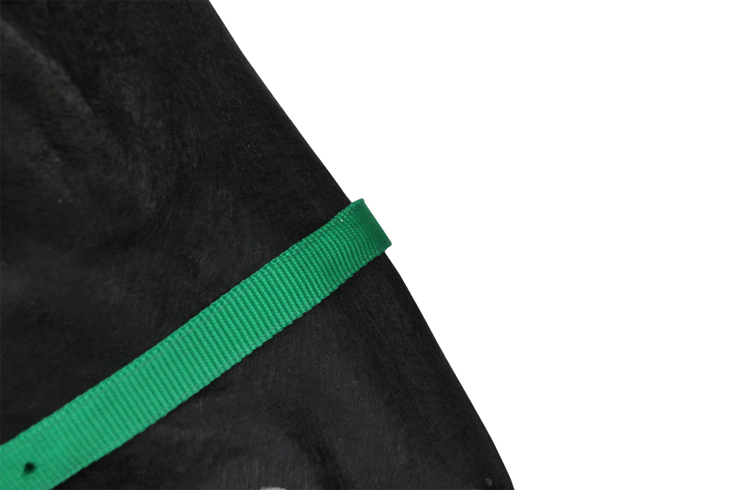 Hofman Halster Classic groen