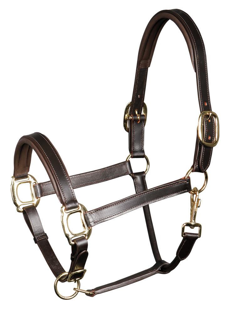 Harry's Horse Halster leder, padded