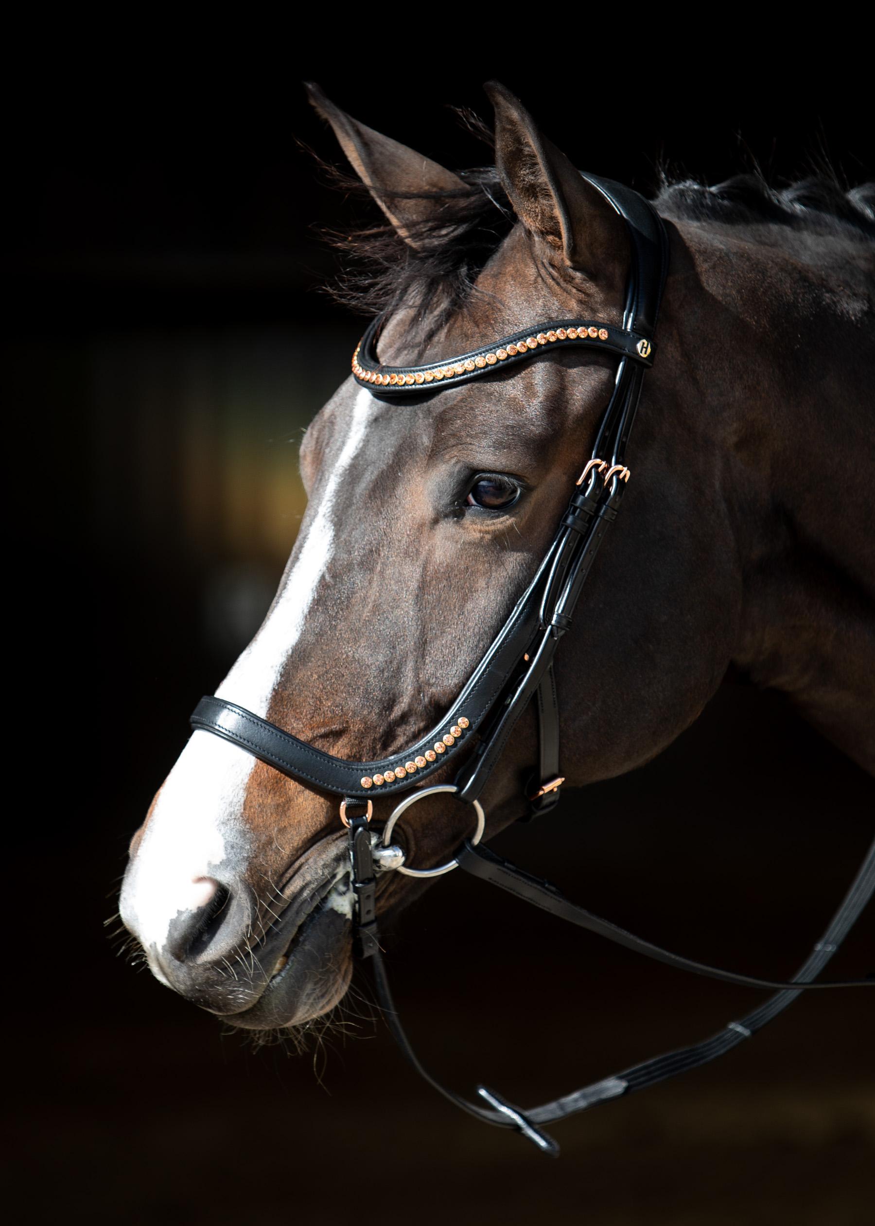 Harry's Horse Hoofdstel Rosegold anatomic