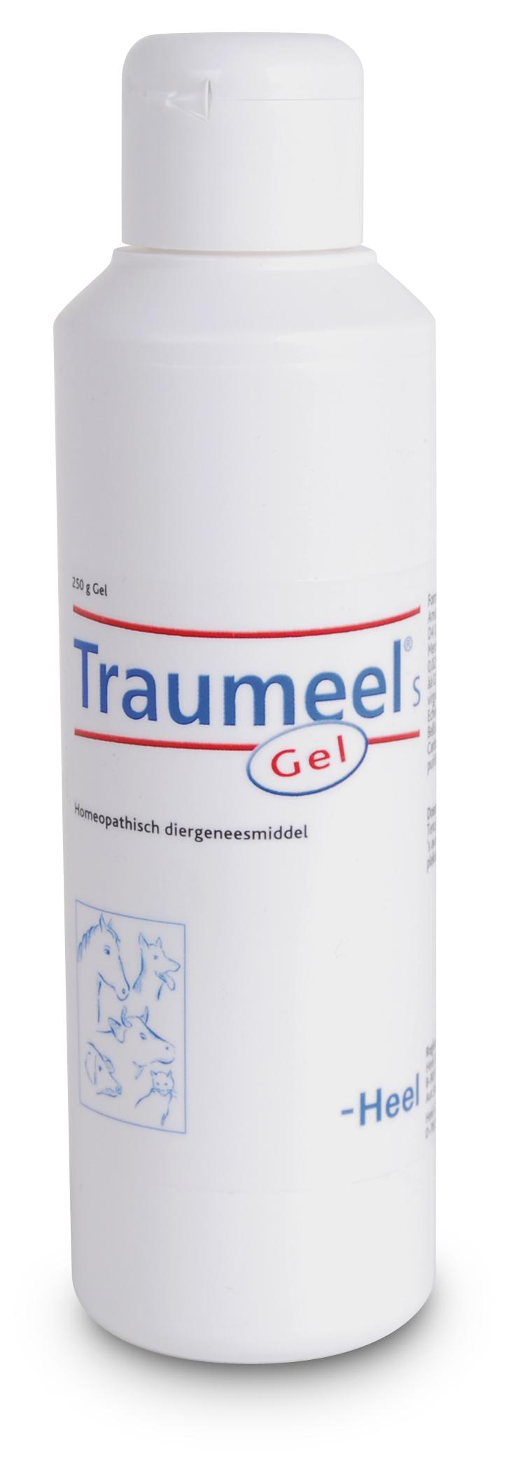 Sectolin Traumeel S Gel 250 gram