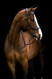 Horseware Rambo Micklem Rubber Reins Bruin Paard