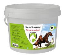 Hofman Sweet Luzerne