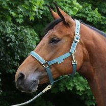 Bucas Halster Dublin pony Mallard Green