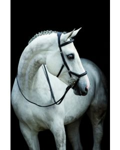Horseware Rambo Micklem Comp teugels Engels leer