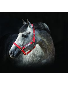 Horseware Field Safe Headcollar