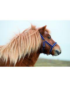 Horseware Amigo Petite Halster